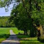 Обустроенные зоны  отдыха, рядом лес